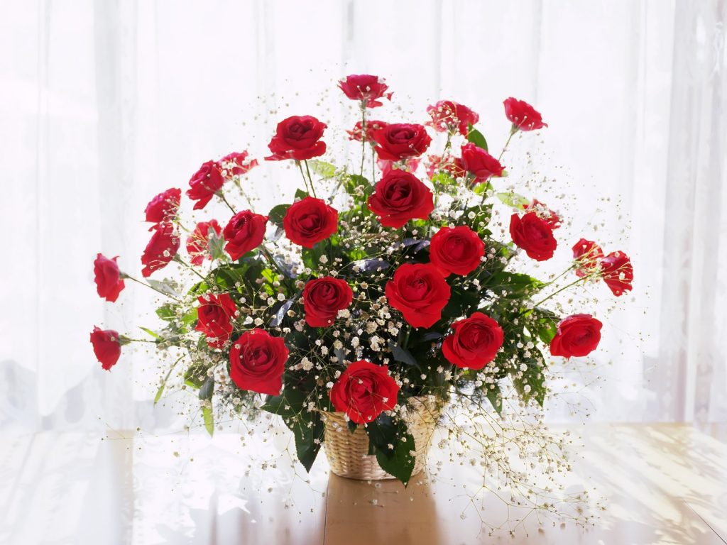 Home Roses 2